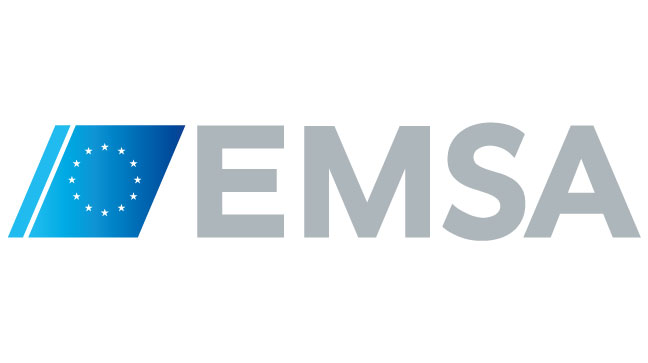Establishment of an external experts database by the European Maritime Safety Agency.