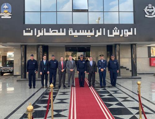 idD participa na reunião da Comissão Conjunta Egito-Portugal