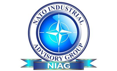 Handbook da Delegação Portuguesa no NIAG